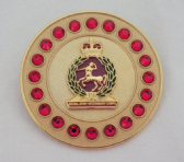 ROYAL ARMY VETENARY CORPS ( RAVC ) BROOCH / BROACH (GRS)